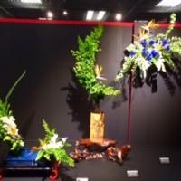 華道京展前期2015流派